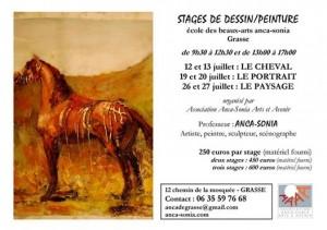 STAGES DE DESSIN-PEINTURE AS - juillet 2014